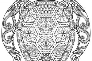adult coloring sheets fbeffdbdcedc puzzle books coloring for adults