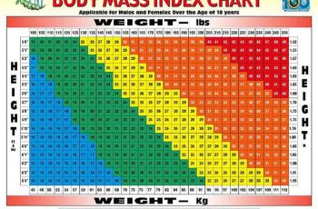 body mass index chart body mass index table calculating body mass index senior health bauberger ppt download