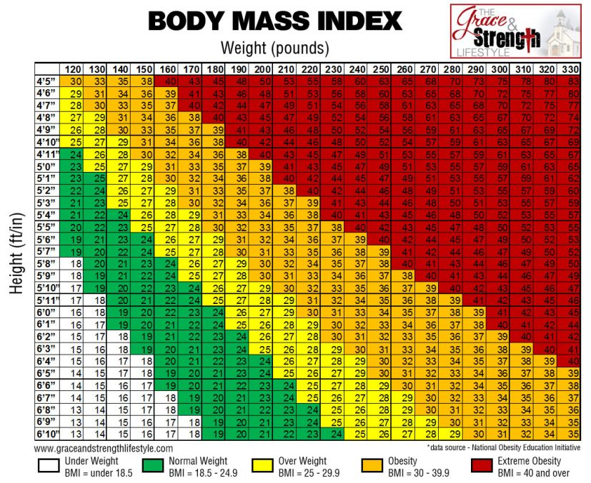 Body Mass Index (BMI) and FITNESSGRAM CHARTS Ignacio's Physical