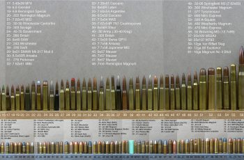 bullet size chart all ammo comparison