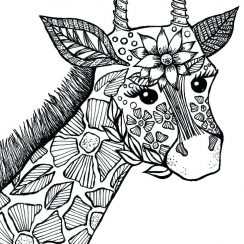 coloring pages of animals adult coloring pages animals coloring pages of animals lovely coloring pages of animals and ocean