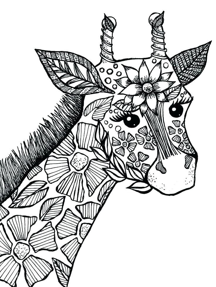 Coloring Pages Zoo Animals Zoo Coloring Pages Printable Coloring