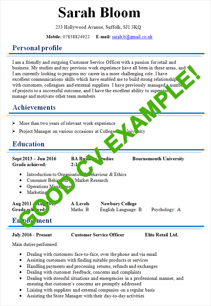 great curriculum vitae examples Baskan.idai.co
