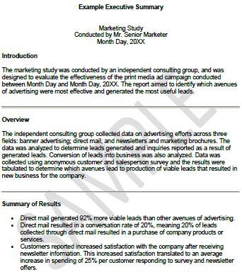 Executive summary example printable template 18 infinite captures