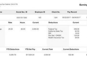 pay stub template aeadf