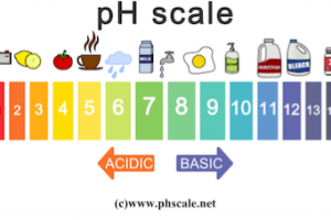 ph scale acid