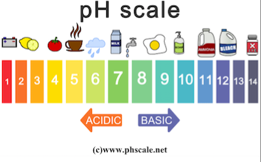pH Scale Storyboard by oliversmith