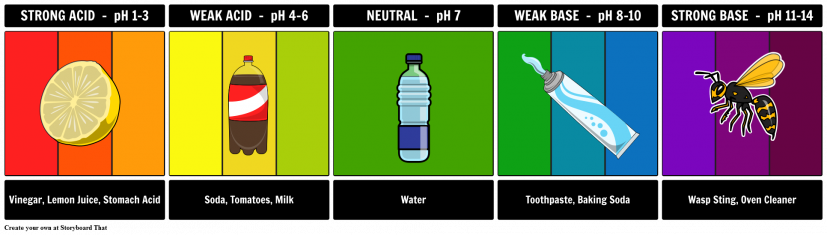 The pH Scale, Neutralisation and Titrations