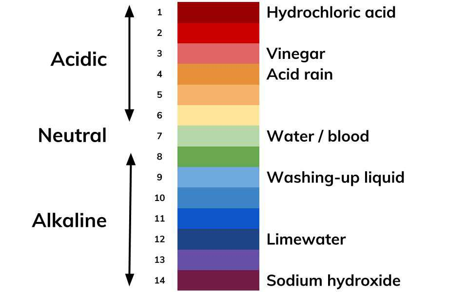 pH Scale & Indicators | Mini Chemistry Learn Chemistry Online
