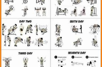 workout schedule for men gym workout schedule for men