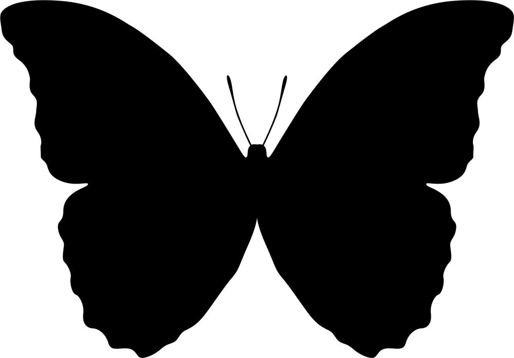 Butterfly Vector Art Illustration (.ai) vector file free download