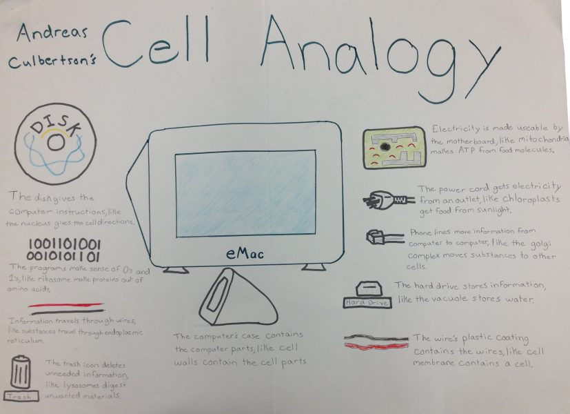 Cell Analogies   Lessons   Tes Teach
