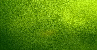 Green Texture Vectors, Photos and PSD files | Free Download
