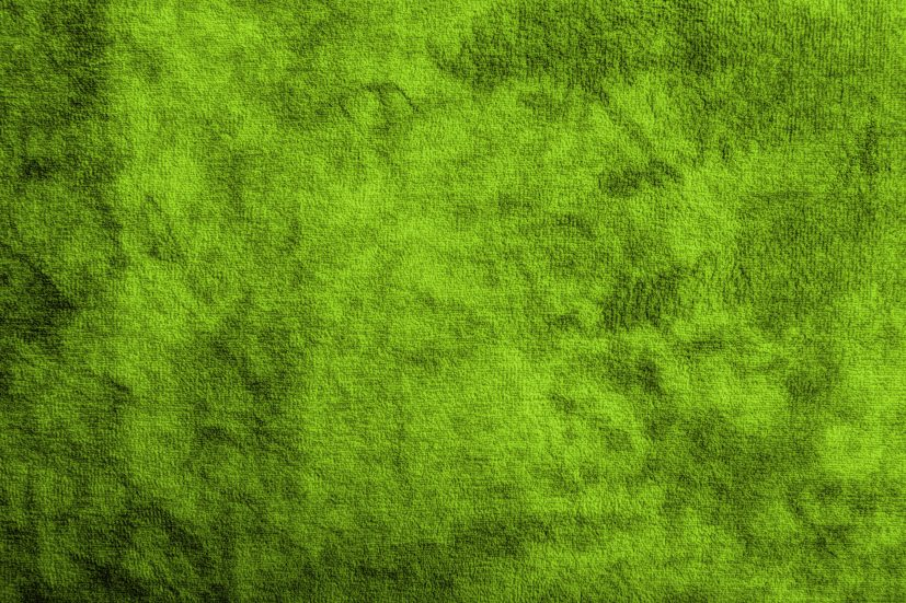 green texture Incep.imagine ex.co