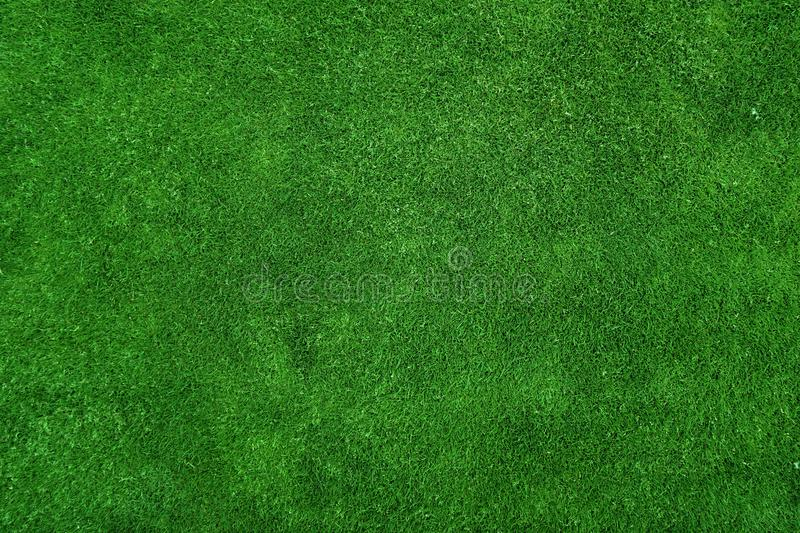 Green grass texture stock photo. Image of wallpaper 112555324