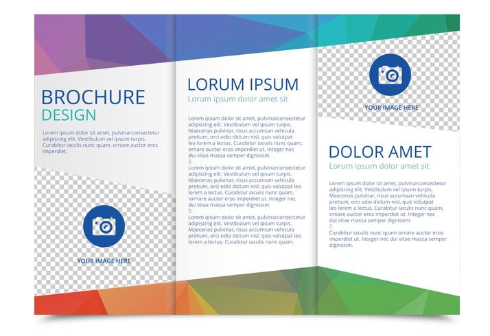 Tri Fold Brochure Vector Template   Download Free Vector Art