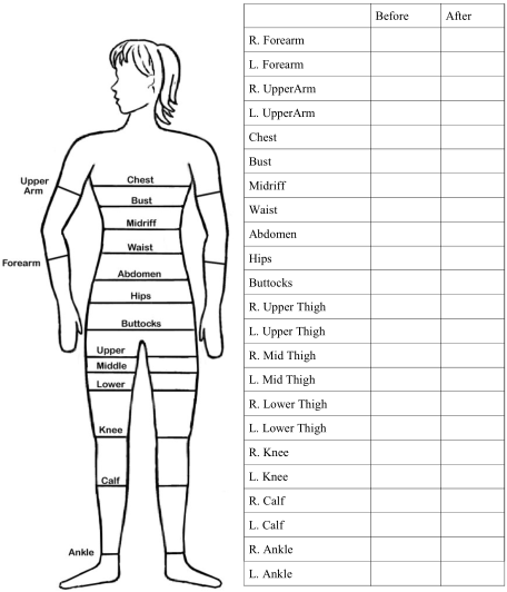 body measurement chart for women template Kleo.beachfix.co
