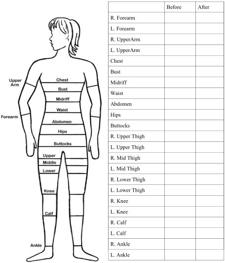 free printable body measurement chart Kleo.beachfix.co