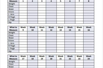 body measurement chart body measurement chart template