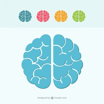 Brain Free Vector Art (7937 Free Downloads)