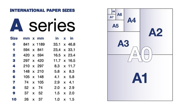 What is the dimension of a chart paper when cut to 1/4th part of