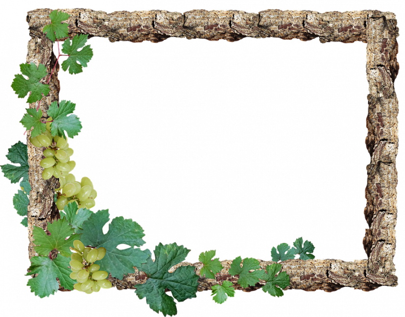 Free photo Wood Border Rustic Grapes Frame Max Pixel