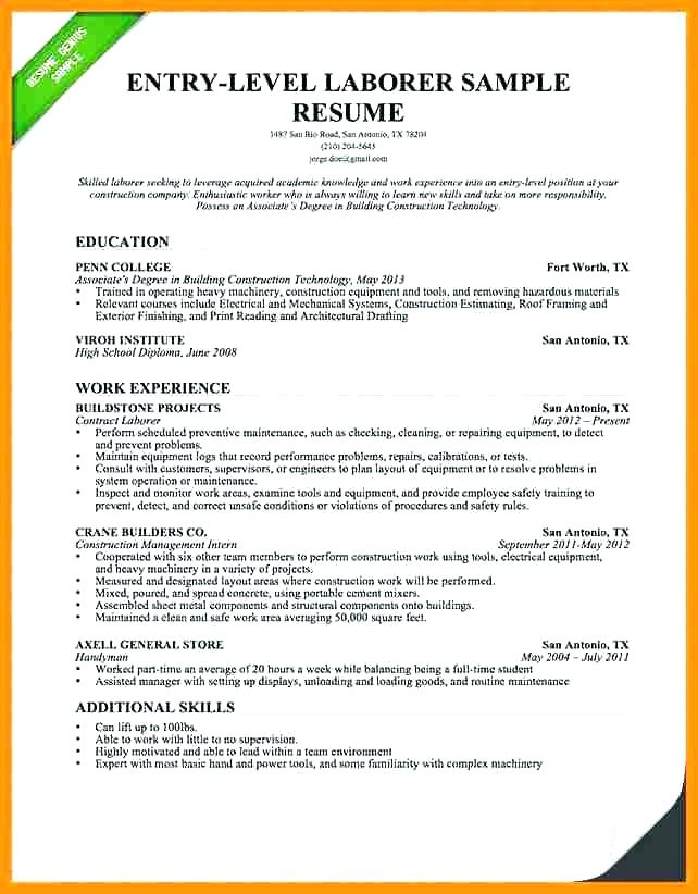 Resume Summary Statement Examples Entry Level Kleobeachfixco