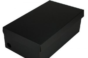 shoe box plain shoe box x